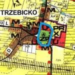 Trzebickolink_studium_cieszkow_czz