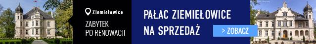 Pałac Ziemiełowice na sprzedaż